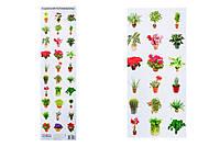 Разрезной материал «Комнатные растения», 2986, отзывы
