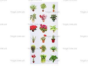 Разрезной материал «Комнатные растения», 2986, фото