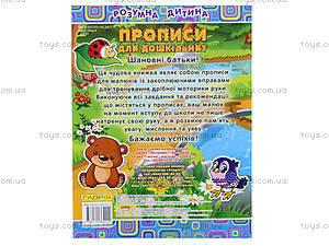 Книжка «Умный ребенок: Прописи для дошколят», 4222, фото