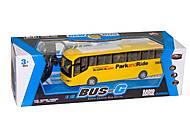 РУ большой автобус, 666-698А, фото