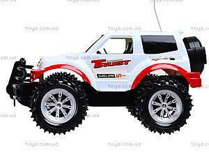 Радиоуправляемый джип для детей Super Jeep, FC16B-2, игрушки