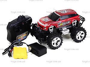 Радиоуправляемый джип для детей Storm, 689-309, игрушки
