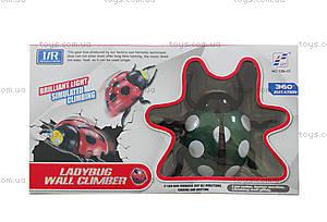 РУ Жук с разными эффектами, SPL297735, toys.com.ua
