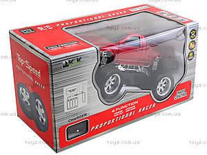 Радиоуправляемое авто Top Speed, 3699-AK1AK2