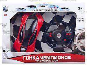 Радиоуправляемое авто «Гонка чемпионов», 666-TT02, фото