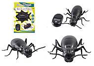 Робот-муравей, на управлении , 9917(T236-D5532)