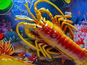 Детская игра «Рыбалка у моря», 895В-21, цена
