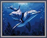 Рисование по номерам «Дельфины», КН056, фото