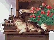 Рисование по номерам «Домашний любимец», КНО2441, купить