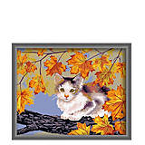 Рисование по номерам «Непослушный котенок», КН021, фото