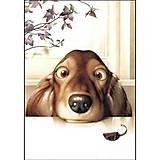 Рисование по номерам «Озорной щенок», КНО2443