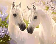 Рисование по номерам «Пара лошадей», КН2433, фото