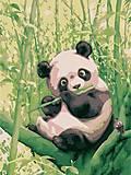Рисование по номерам «Забавная панда», КНО2440, фото