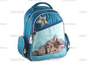 Рюкзак школьный «Котёнок», R14-520K