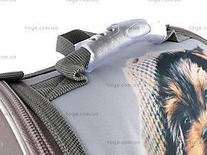 Рюкзак школьный «Щенок», R14-501-3K, детские игрушки