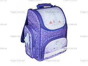 Школьный рюкзак Dream, ZB14.0116DR