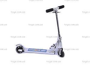 Самокат 2–х колесный Scooter Rollerboard, W02-3543