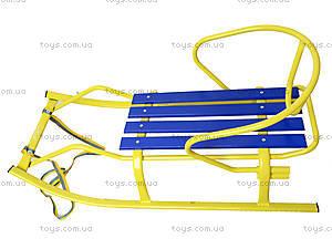 Детские санки «Спорт F1 Патриот», 7310, игрушки
