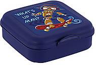 Сендвичбокс «What's up man?» , 161457-004, опт