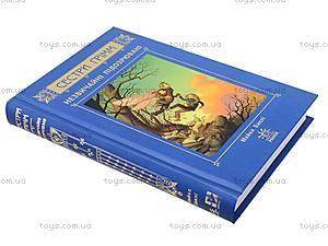 Книга Сестры Гримм «Необычные подозреваемые», 2090, детские игрушки