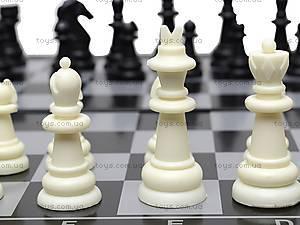 Шахматы игровые, 11122M, toys.com.ua