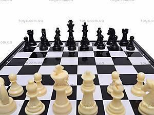 Шахматы пластиковые для детей, DL4813, отзывы