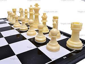 Шахматы пластиковые для детей, DL4813, детские игрушки