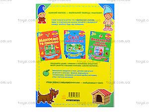 Детская книга «Мыслим и сравниваем», 5971, фото