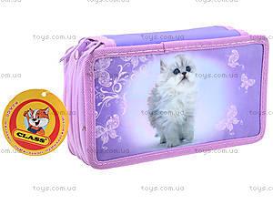 Школьный пенал-книга для детей Lovely Kitty, 94089, цена