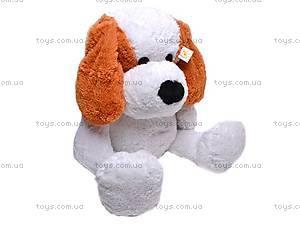 Сидячая собака Бобик, 7842/40, фото