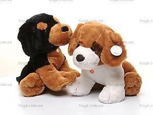 Сидячая собака, музыкальная, Q-101-064