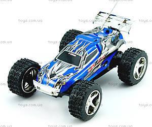 Скоростная радиоуправляемая машинка Toys Speed Racing, синий, WL-2019blu