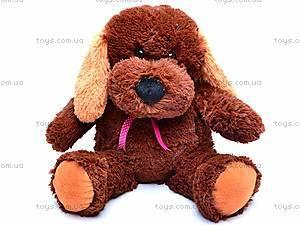 Собака Барбос, 4131