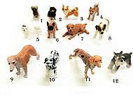 Собака Гонконг резиновая 12 видов, 258, купить