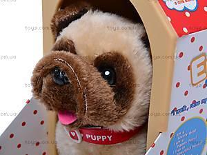 Собака игрушечная с будкой, 9118C, фото