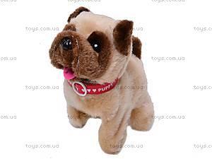 Собака игрушечная, с поводком, 9118E1