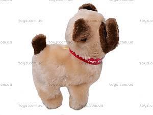 Собака игрушечная, с поводком, 9118E1, цена