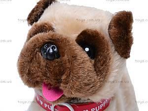 Собака игрушечная, с поводком, 9118E1, игрушки