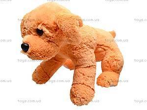 Собака мягкая «Руди», 12.04.01, цена