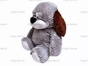 Собака плюшевая «Дружок», 7818/60, купить