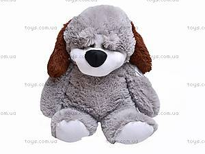 Собака плюшевая «Дружок», 7818/60, отзывы