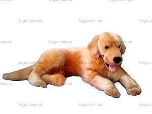 Игрушечная собака «Рони», СБР2