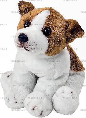 Мягкая собака «Рикки», FD-883