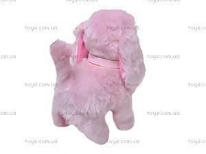 Собака с поводком, 9103E1, купить