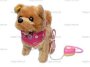 Собака с поводком игрушечная, 9105D1, фото