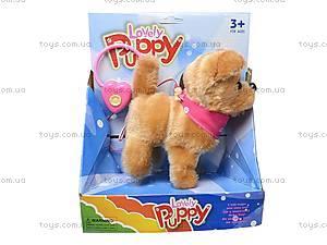 Собака с поводком игрушечная, 9105D1