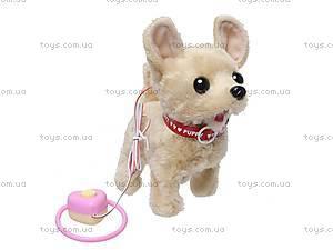 Собака с поводком музыкальная, 9111D1, цена