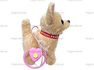 Собака с поводком музыкальная, 9111D1, игрушки