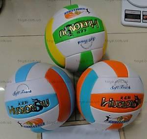 Спортивный волейбольный мяч, W02-4598