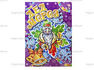 Серебристая раскраска «Дед Мороз», А19579Р, цена